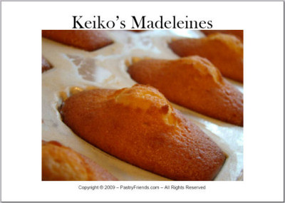 madeleines recipe ebook
